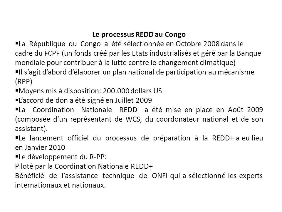 Le processus REDD au Congo