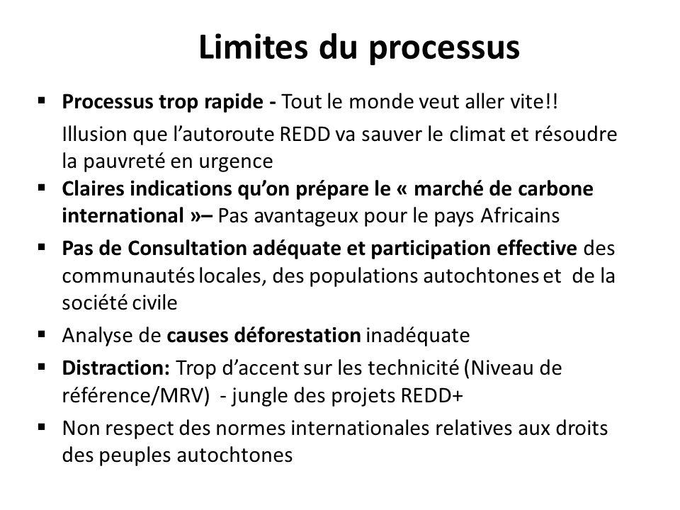 Limites du processus Processus trop rapide - Tout le monde veut aller vite!!
