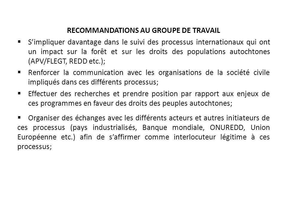 RECOMMANDATIONS AU GROUPE DE TRAVAIL