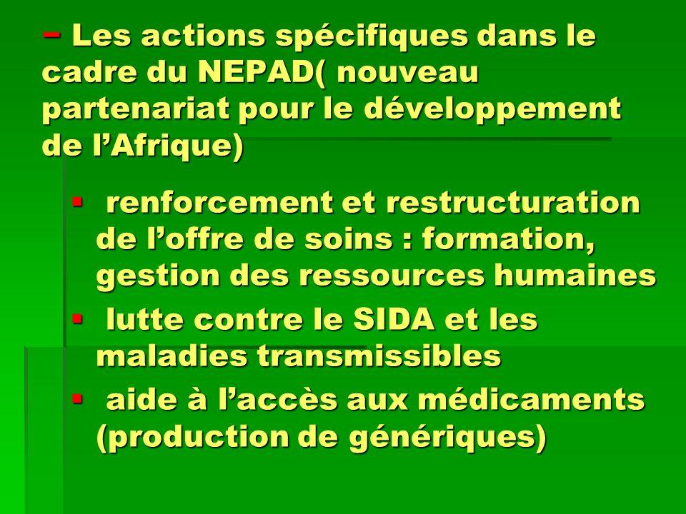 Les actions spécifiques dans le cadre du NEPAD( nouveau partenariat pour le développement de l'Afrique)