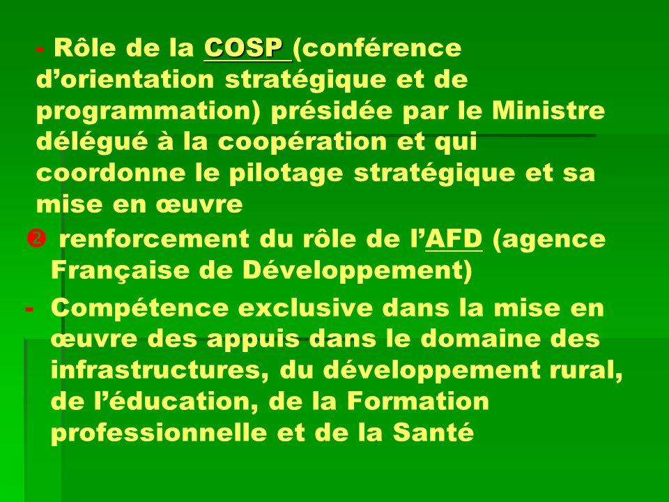 Rôle de la COSP (conférence d'orientation stratégique et de programmation) présidée par le Ministre délégué à la coopération et qui coordonne le pilotage stratégique et sa mise en œuvre