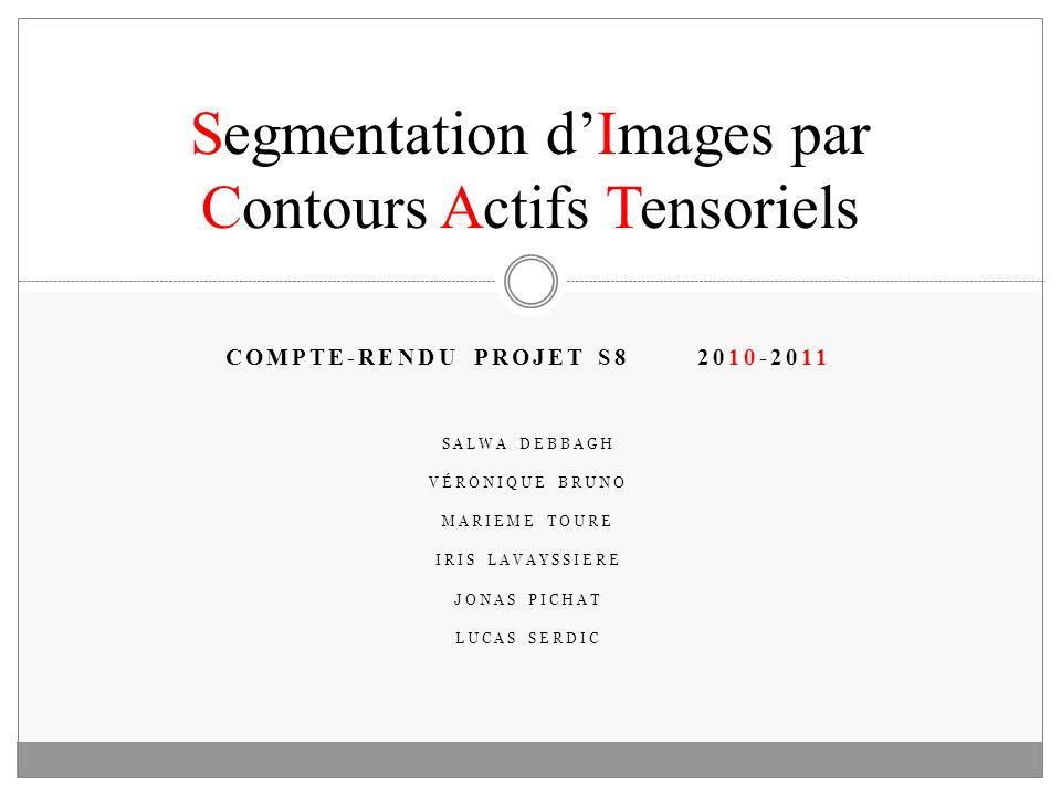 Segmentation d'Images par Contours Actifs Tensoriels