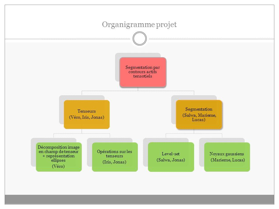 Organigramme projet Segmentation par contours actifs tensotiels