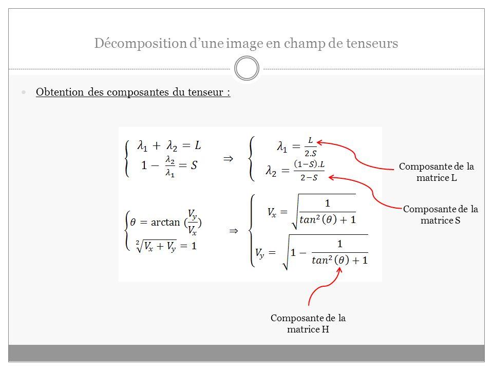 Décomposition d'une image en champ de tenseurs