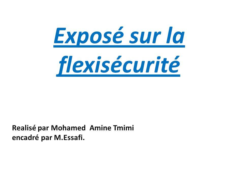 Realisé par Mohamed Amine Tmimi encadré par M.Essafi.