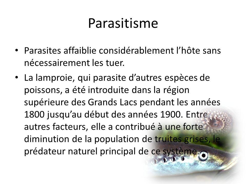 Parasitisme Parasites affaiblie considérablement l'hôte sans nécessairement les tuer.