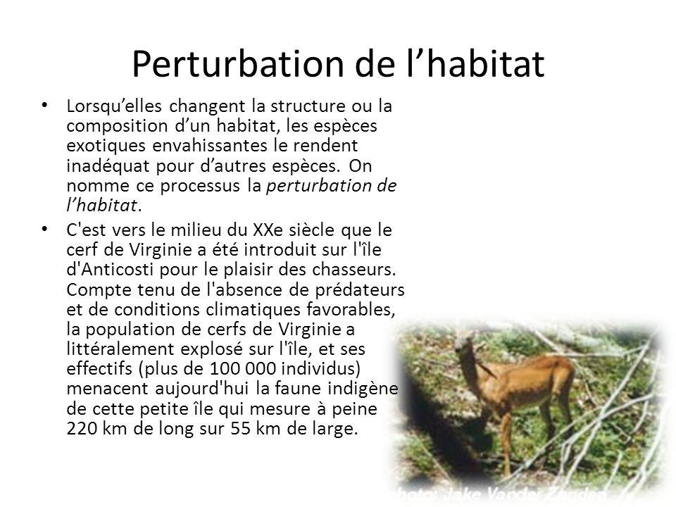 Perturbation de l'habitat