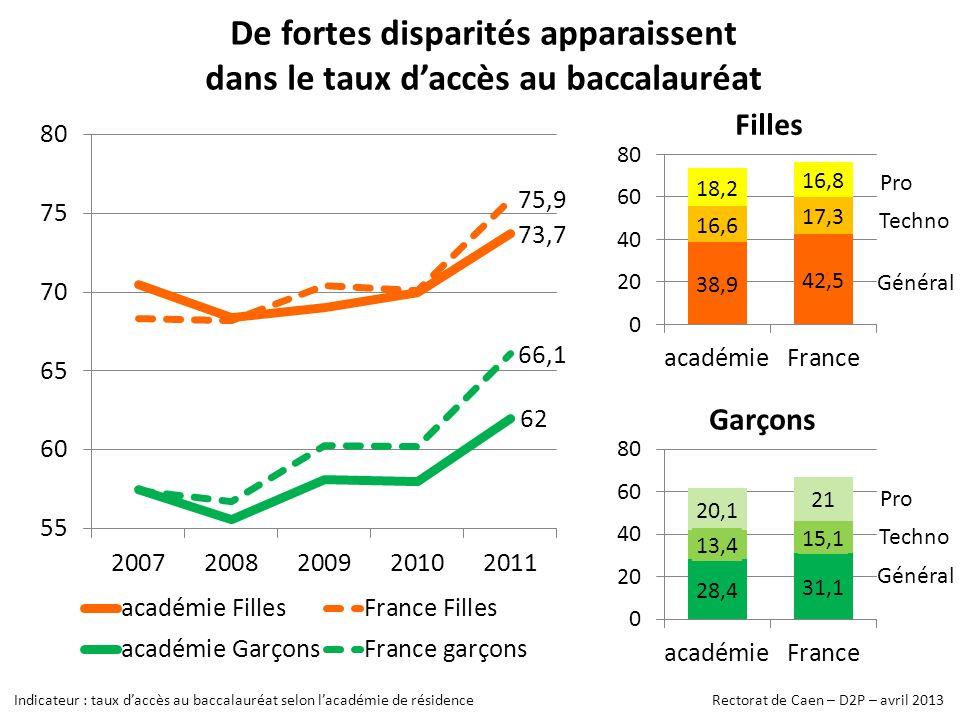 De fortes disparités apparaissent dans le taux d'accès au baccalauréat