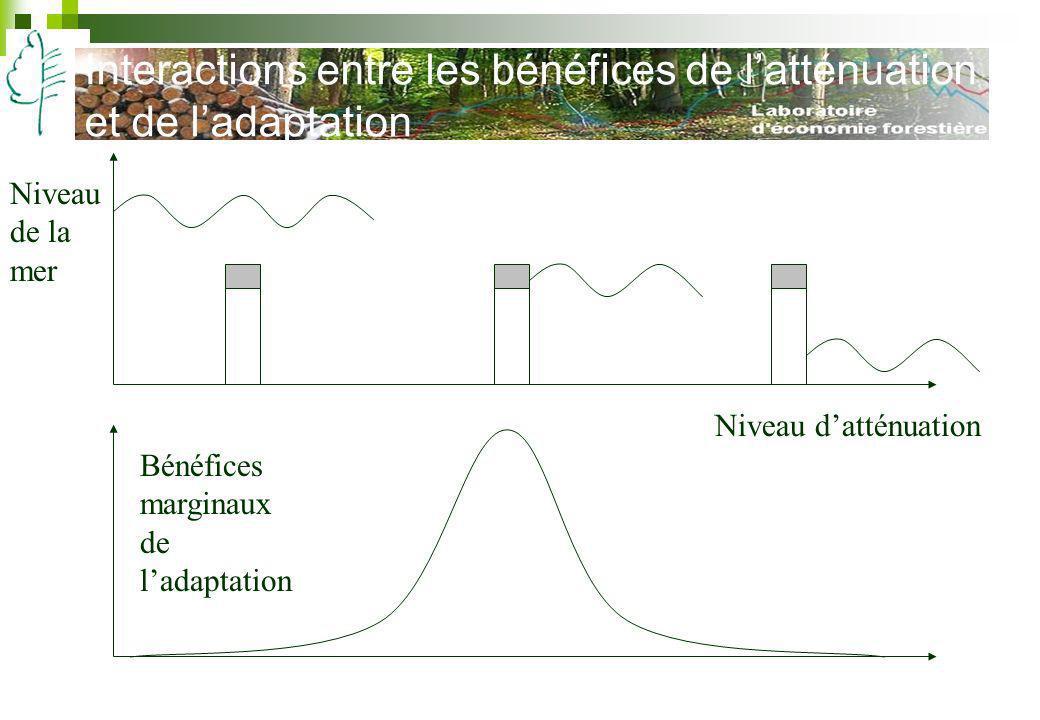 Interactions entre les bénéfices de l'atténuation et de l'adaptation