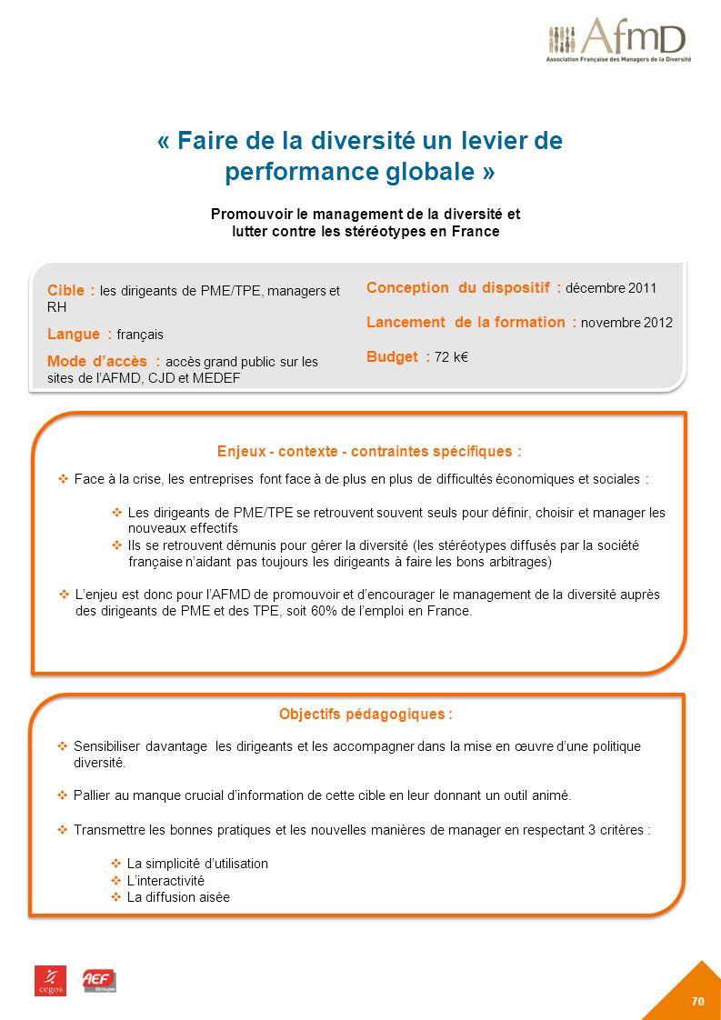 « Faire de la diversité un levier de performance globale »