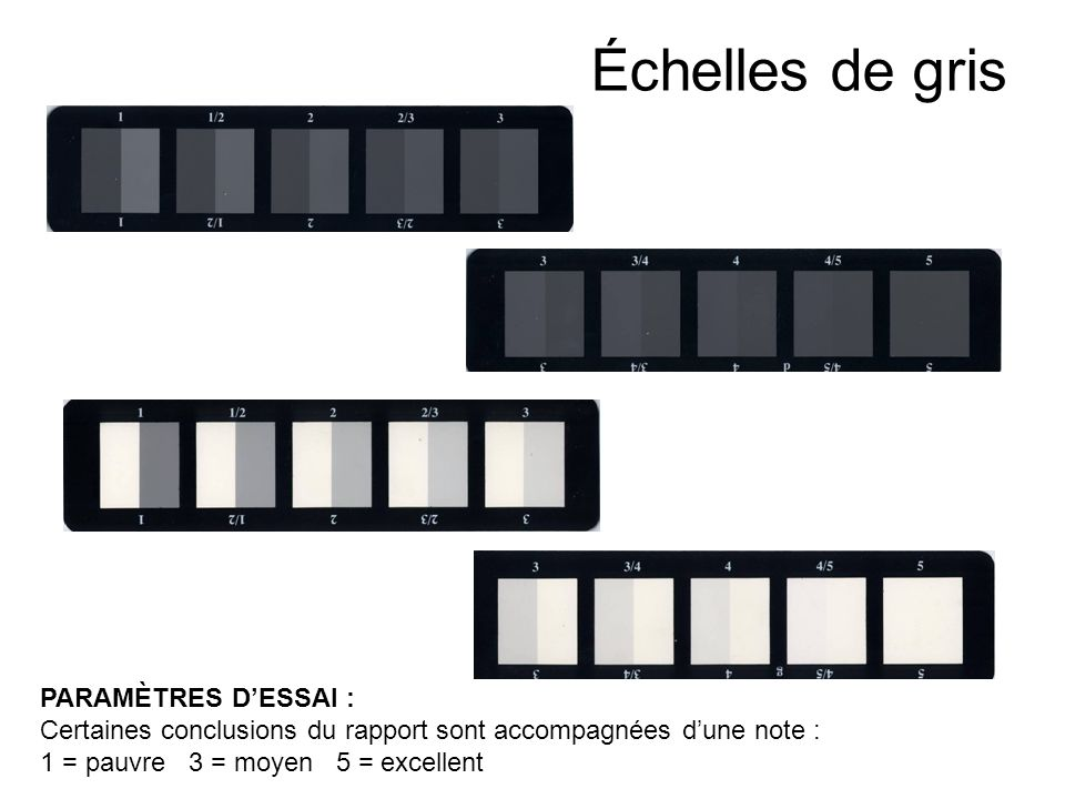 Échelles de gris PARAMÈTRES D'ESSAI :