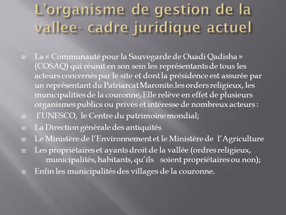 L'organisme de gestion de la vallee- cadre juridique actuel