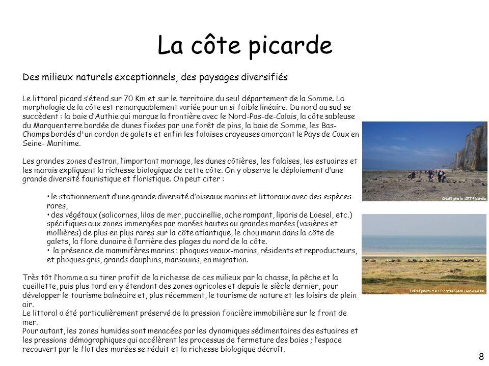 La côte picarde Des milieux naturels exceptionnels, des paysages diversifiés.