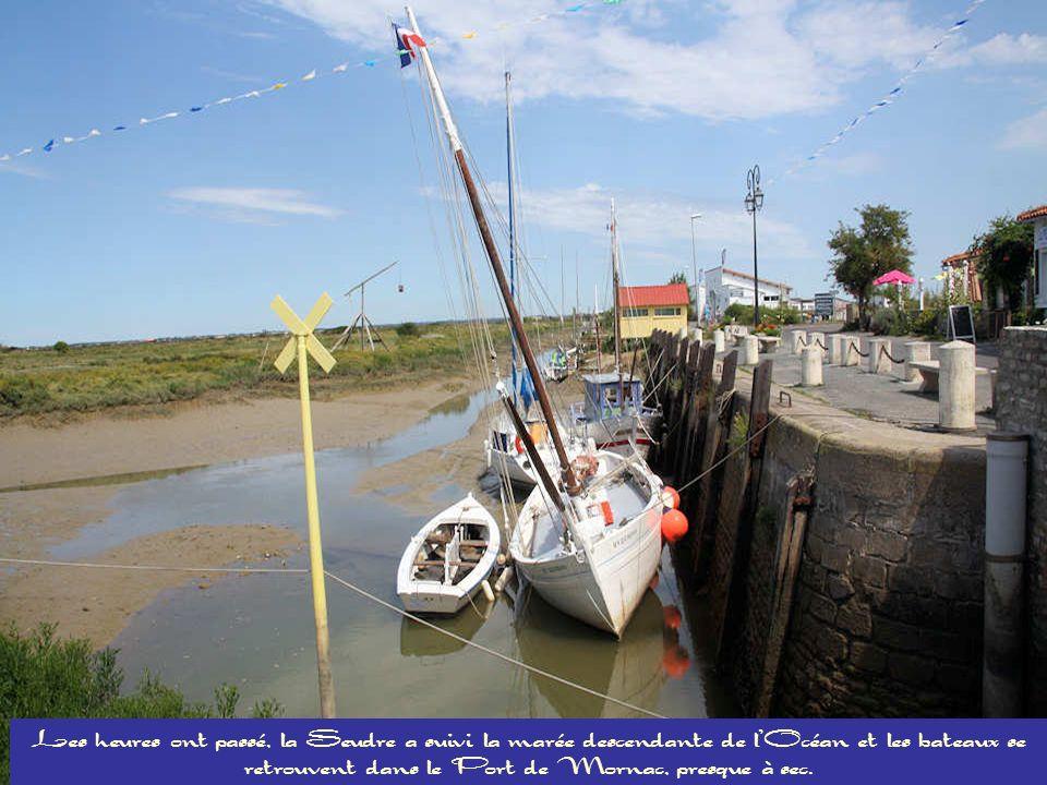 Les heures ont passé, la Seudre a suivi la marée descendante de l'Océan et les bateaux se retrouvent dans le Port de Mornac, presque à sec.