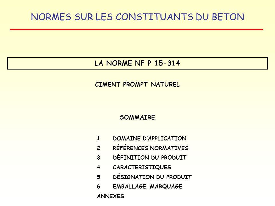 LA NORME NF P 15-314 CIMENT PROMPT NATUREL SOMMAIRE
