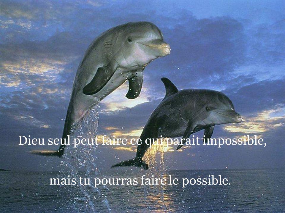 Dieu seul peut faire ce qui parait impossible,