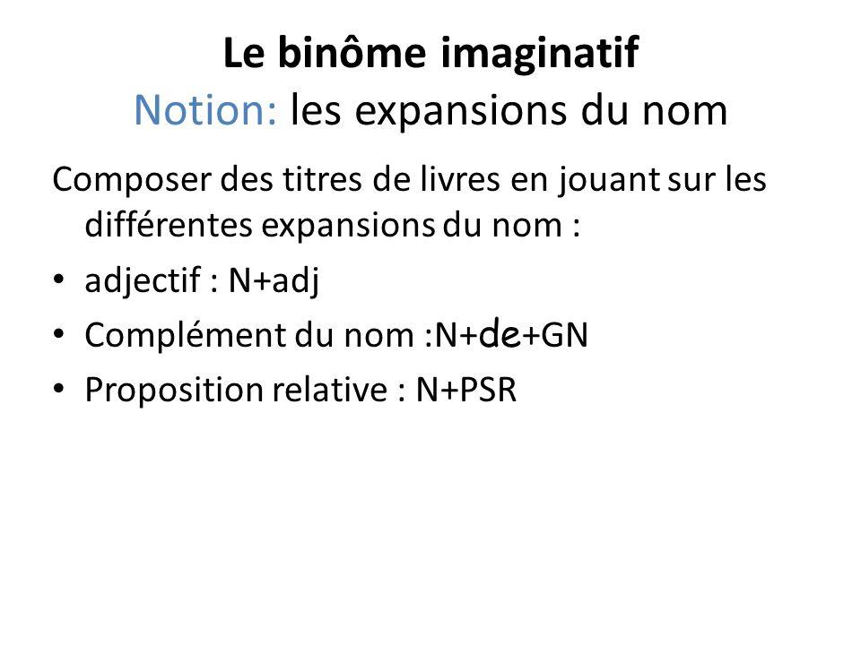 Le binôme imaginatif Notion: les expansions du nom