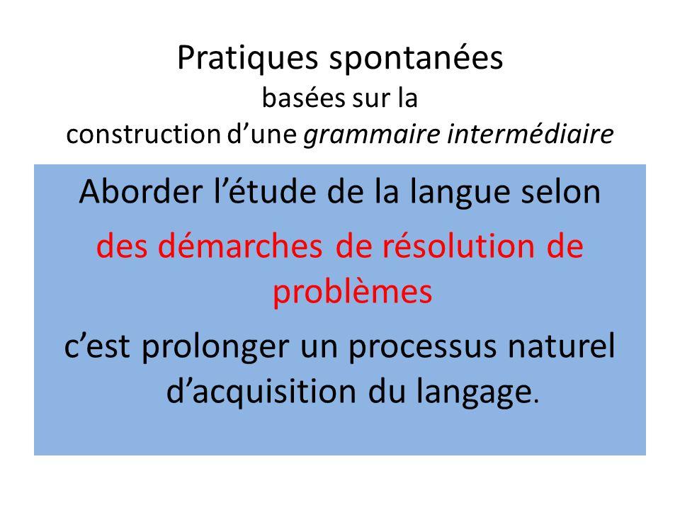 Pratiques spontanées basées sur la construction d'une grammaire intermédiaire