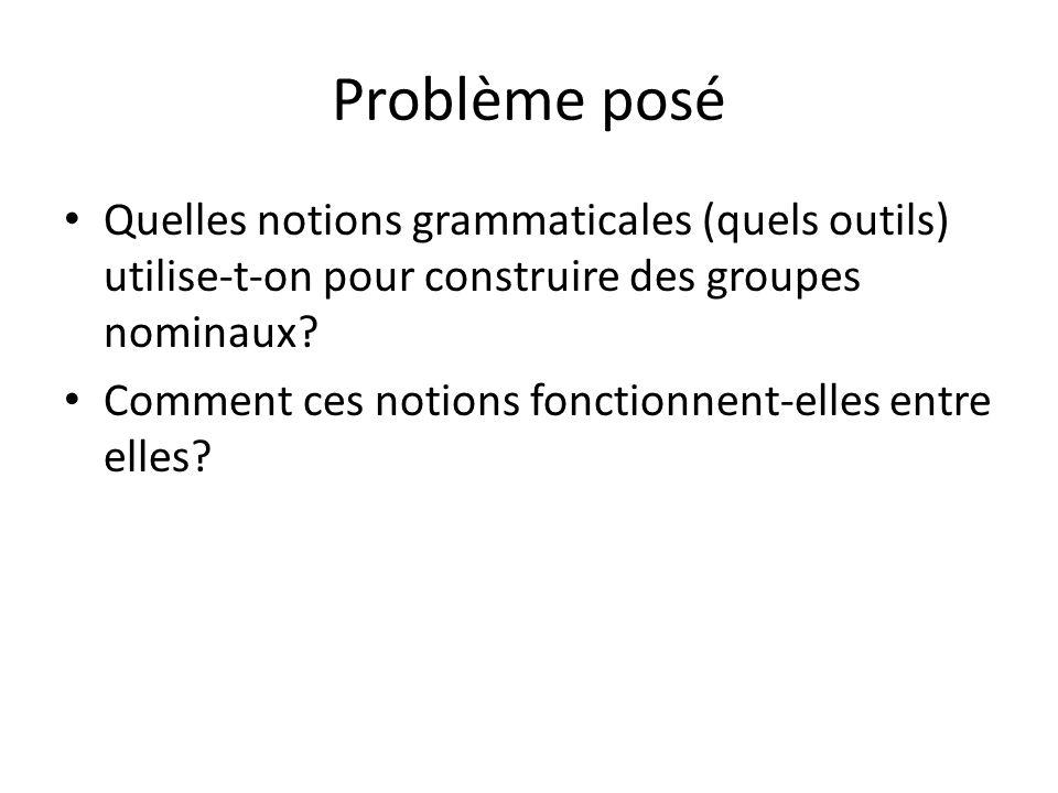 Problème posé Quelles notions grammaticales (quels outils) utilise-t-on pour construire des groupes nominaux