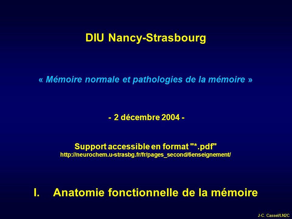 DIU Nancy-Strasbourg Anatomie fonctionnelle de la mémoire