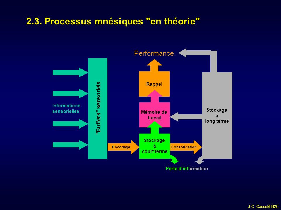 2.3. Processus mnésiques en théorie