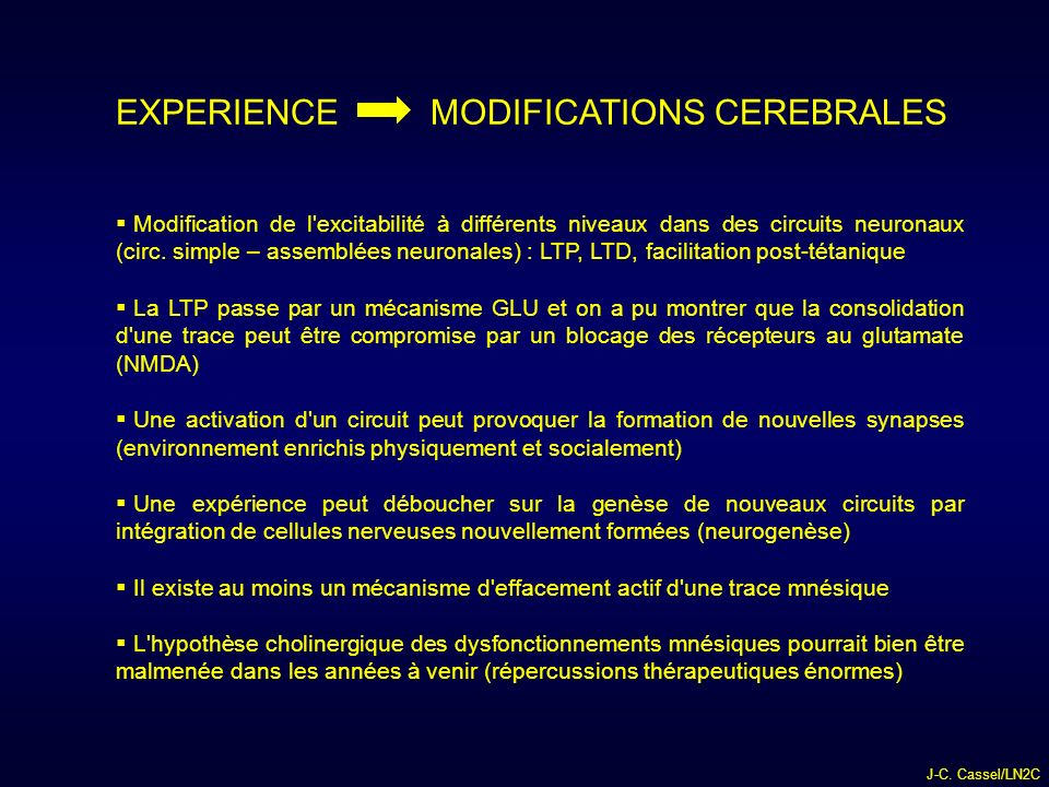 EXPERIENCE MODIFICATIONS CEREBRALES