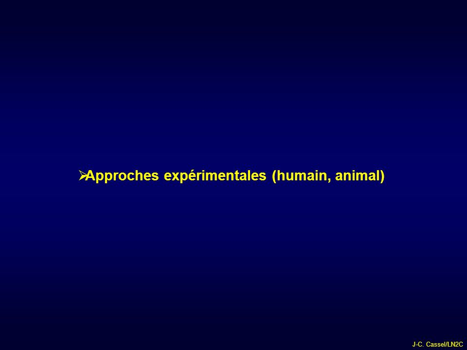Approches expérimentales (humain, animal)