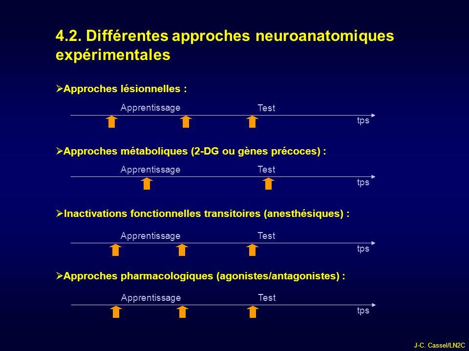 4.2. Différentes approches neuroanatomiques expérimentales