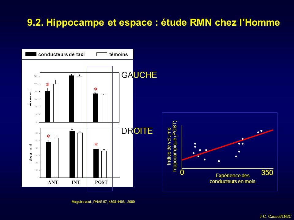 9.2. Hippocampe et espace : étude RMN chez l Homme