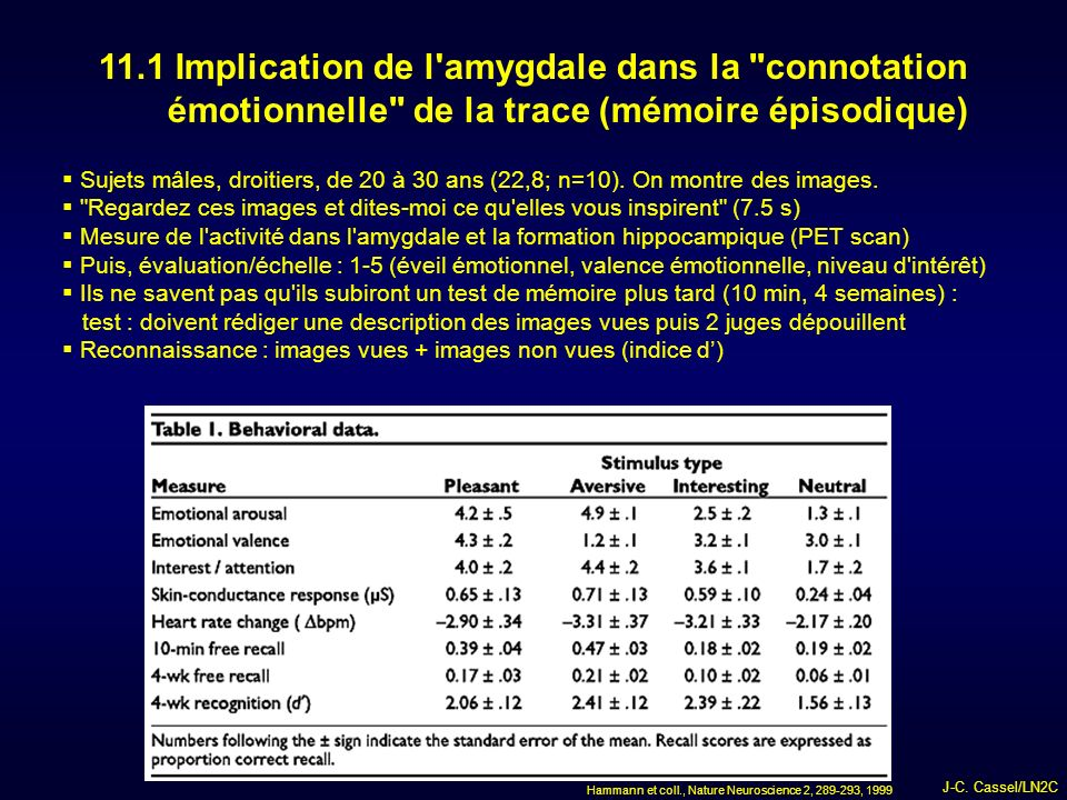11.1 Implication de l amygdale dans la connotation