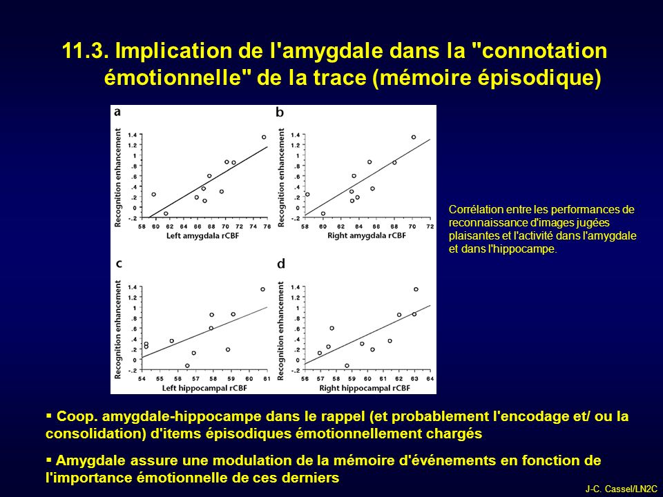 11.3. Implication de l amygdale dans la connotation