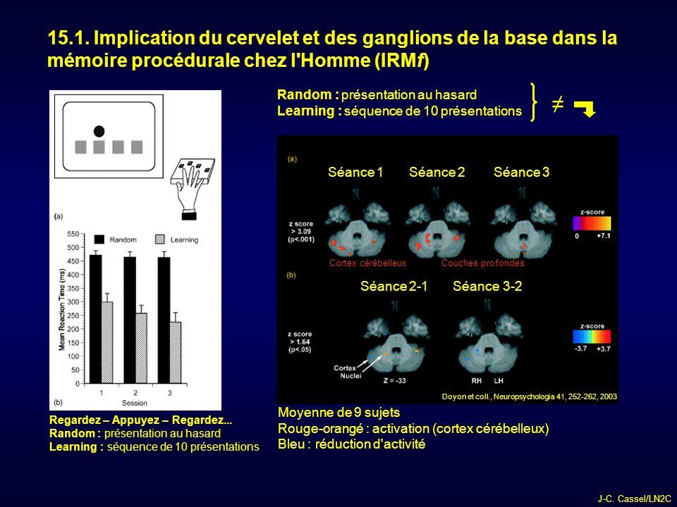 15.1. Implication du cervelet et des ganglions de la base dans la mémoire procédurale chez l Homme (IRMf)