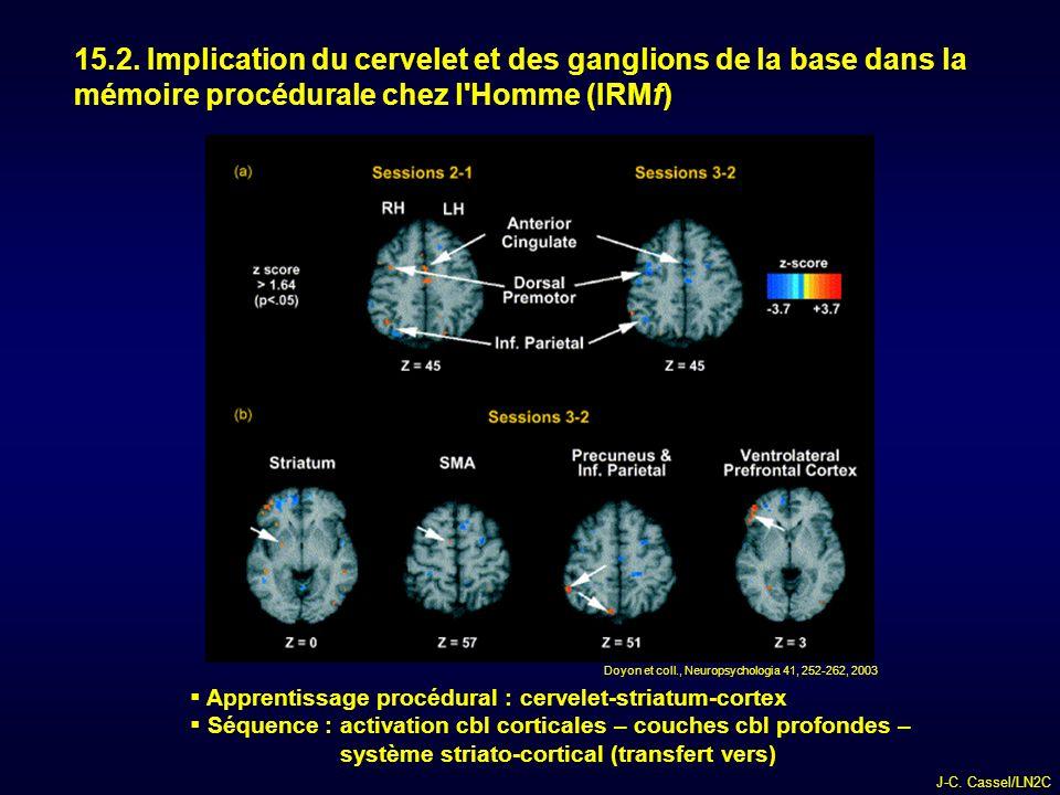 15.2. Implication du cervelet et des ganglions de la base dans la mémoire procédurale chez l Homme (IRMf)