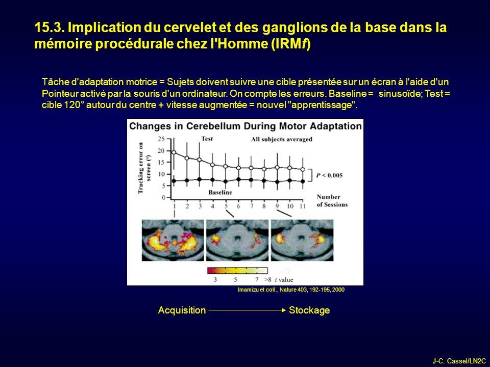 15.3. Implication du cervelet et des ganglions de la base dans la mémoire procédurale chez l Homme (IRMf)