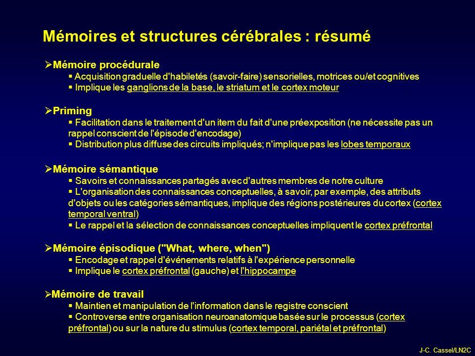 Mémoires et structures cérébrales : résumé