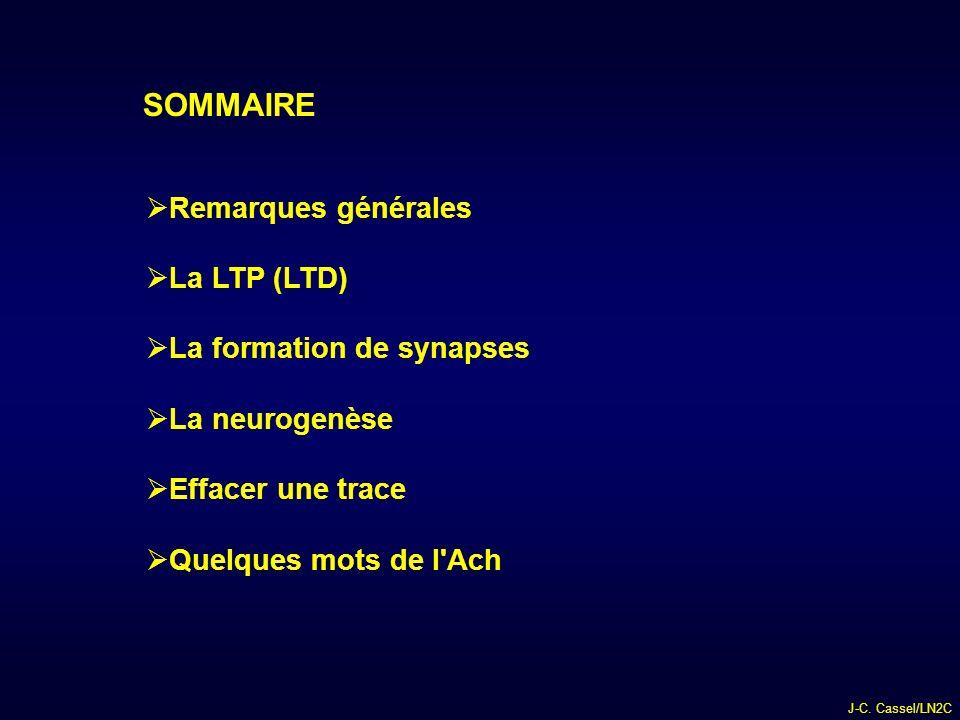 SOMMAIRE Remarques générales La LTP (LTD) La formation de synapses