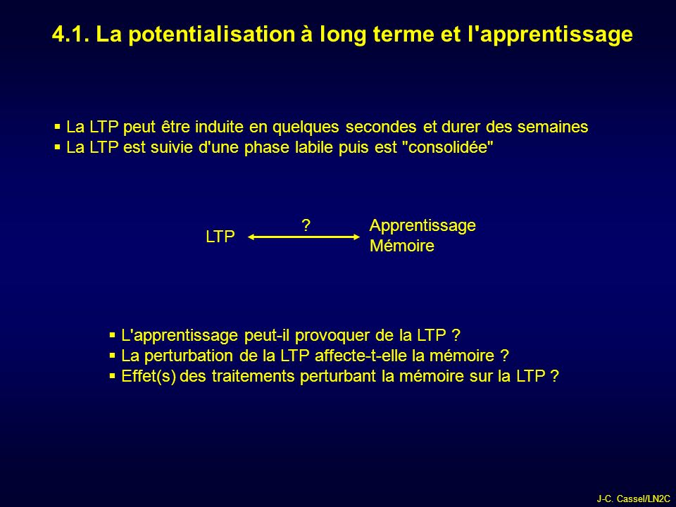4.1. La potentialisation à long terme et l apprentissage