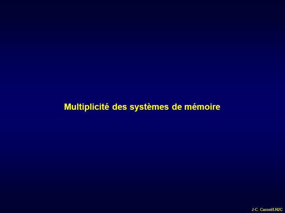 Multiplicité des systèmes de mémoire
