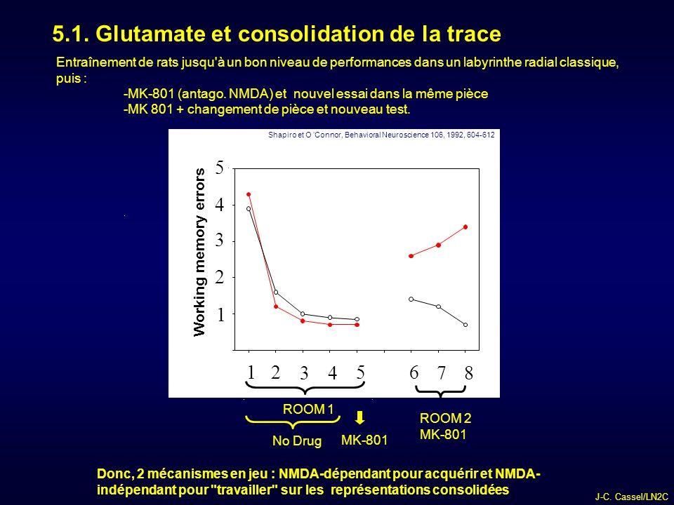 5.1. Glutamate et consolidation de la trace