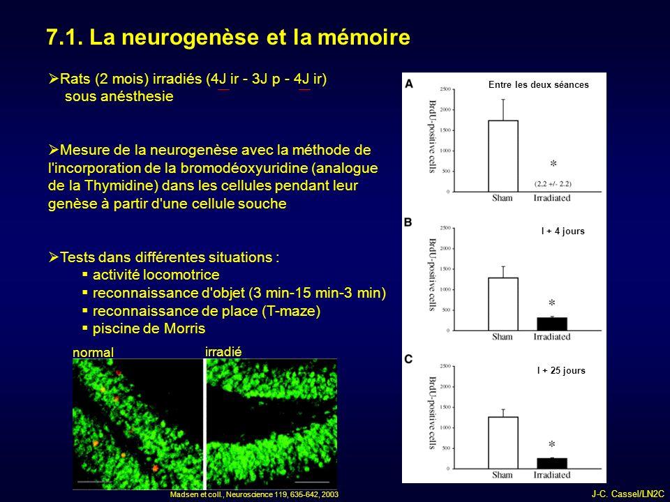 7.1. La neurogenèse et la mémoire