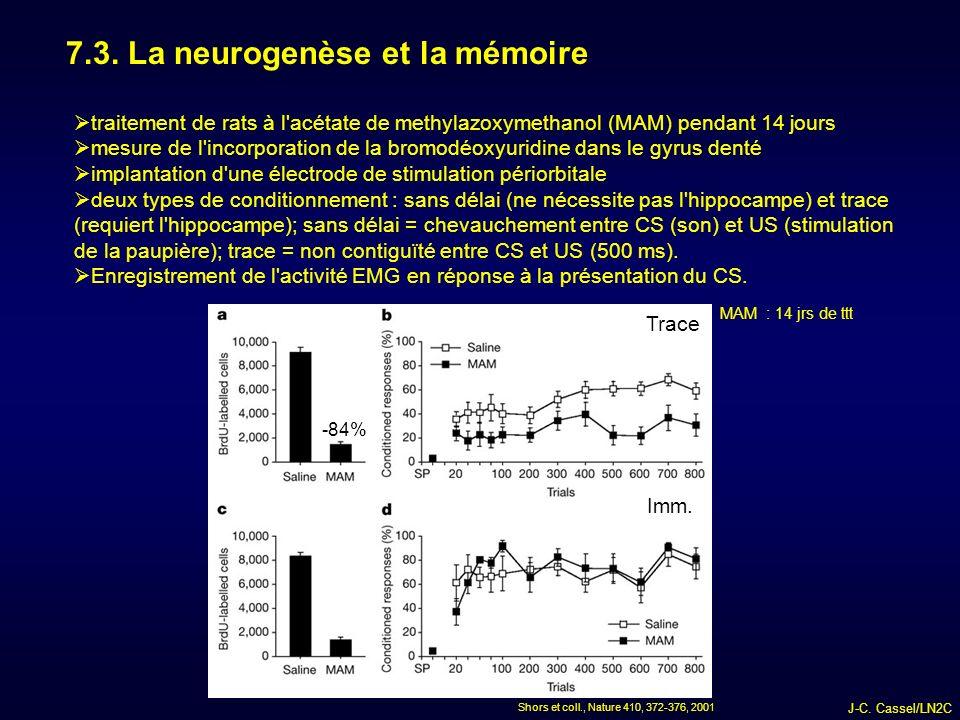 7.3. La neurogenèse et la mémoire
