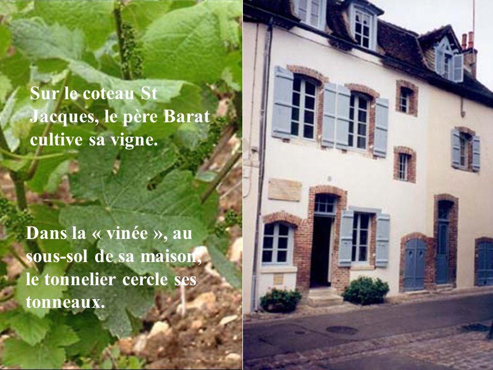 Sur le coteau St Jacques, le père Barat cultive sa vigne.