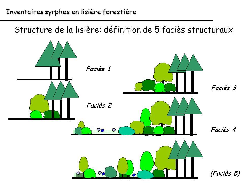 Structure de la lisière: définition de 5 faciès structuraux