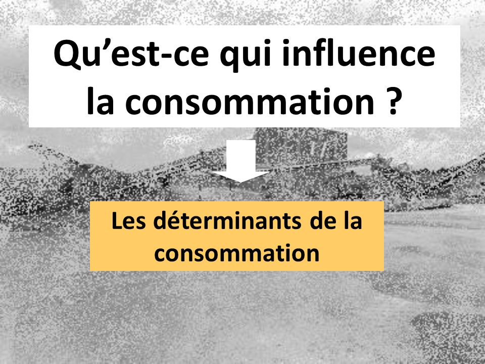 Qu'est-ce qui influence la consommation