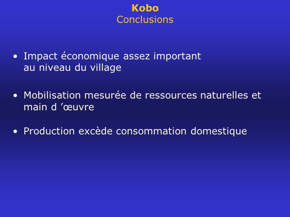 Kobo Conclusions Impact économique assez important au niveau du village. Mobilisation mesurée de ressources naturelles et main d 'œuvre.