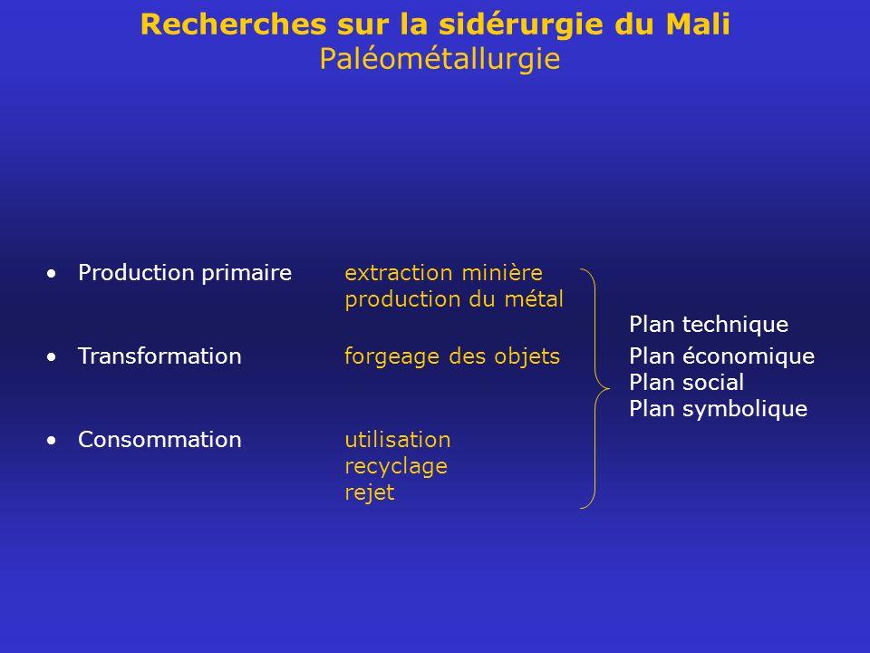 Recherches sur la sidérurgie du Mali Paléométallurgie