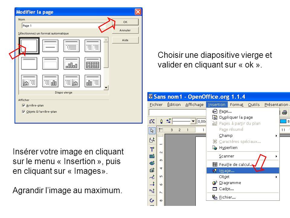 Choisir une diapositive vierge et valider en cliquant sur « ok ».