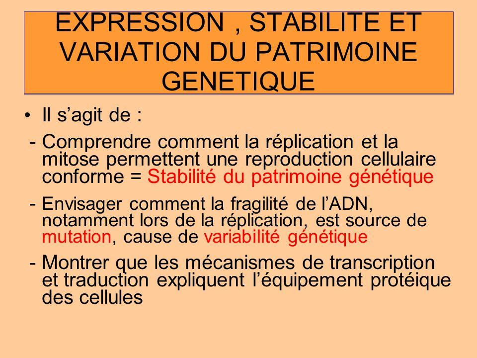 EXPRESSION , STABILITE ET VARIATION DU PATRIMOINE GENETIQUE