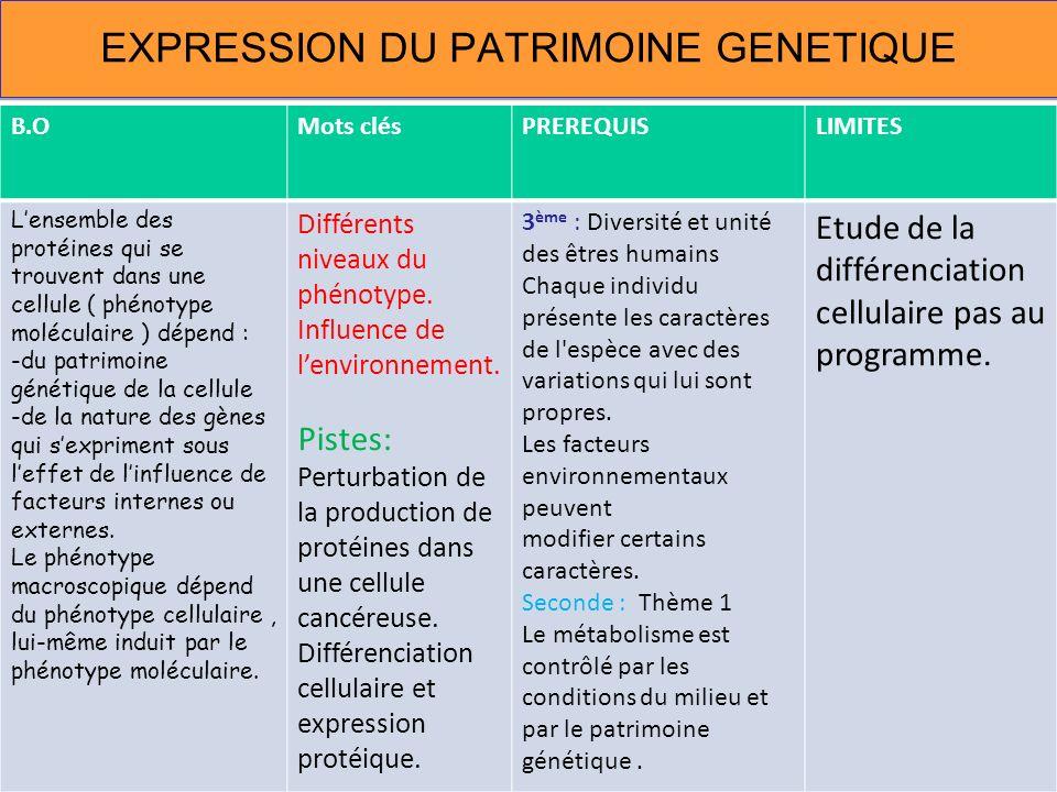 EXPRESSION DU PATRIMOINE GENETIQUE