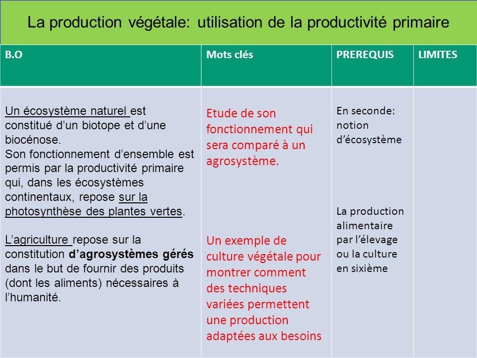La production végétale: utilisation de la productivité primaire